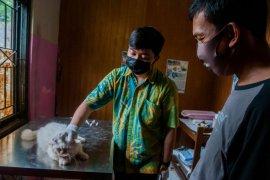 Khawatir corona, warga Pandeglang rutin periksa kesehatan hewan peliharaan