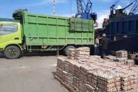 Karantina pertanian Samarinda pastikan ratusan ton telur ayam sehat dikonsumsi