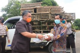 Wali kota serahkan bantuan unggas warga terdampak COVID-19