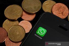 Brazil izinkan WhatsApp luncurkan fitur transfer uang