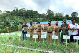 Pemkab Bangka Tengah dorong petani tekan penggunaan pupuk kimia