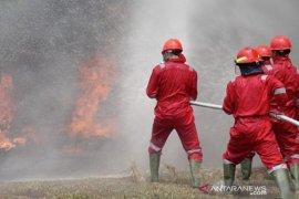 Di tengah terjadinya pandemi, PT Tri Buana Mas tidak lengah antisipasi Karhutla