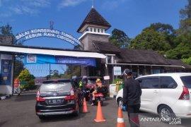 Kebun Raya Cibodas Cianjur kembali dibuka untuk umum