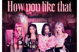 """""""How You Like That"""" BLACKPINK debut di peringkat ke-33 Hot 100 Billboard"""