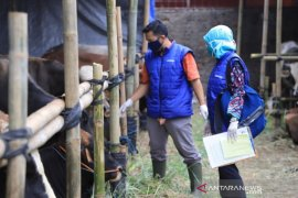Cegah COVID-19, Kota Tangerang: Penjual hewan kurban wajib terapkan protokol kesehatan
