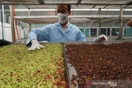 Indonesia dinilai bisa menggarap peluang investasi di bidang obat herbal