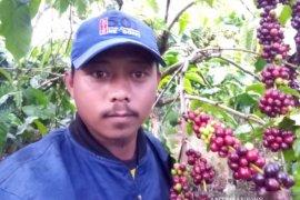 Petani Rejang Lebong minta pemerintah fokus kembangkan tanaman kopi