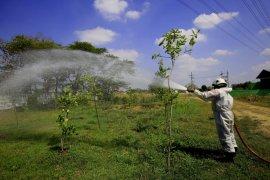 Pengunjung Taman Hutan Raya Surabaya wajib bermasker