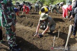 Bupati Malra pimpin tanam bibit di kebun manunggal Ohoi Debut