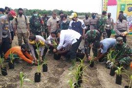Jaga Kampung, gerakan mewujudkan ketahanan pangan