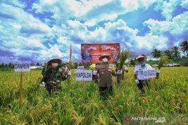 Polda Gorontalo dan Korem 133 dukung warga wujudkan ketahanan pangan