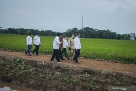 Modern tech-based farming to develop Central Kalimantan's food estate
