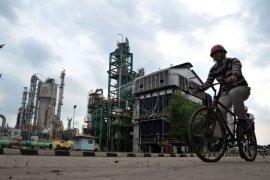 Delapan orang  karyawan PT Pusri Palembang positif COVID-19