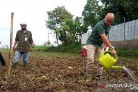 Kota Sukabumi siap kembangkan pangan alternatif non-beras