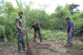 Anggota TMMD 108 Kodim 1203/Ktp bantu warga menanam pohon pisang