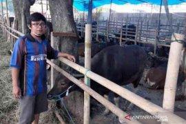 Pemkot Bekasi siapkan aturan pemotongan hewan kurban di masa pandemi