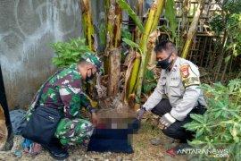 Mayat bayi perempuan ditemukan dalam kondisi utuh