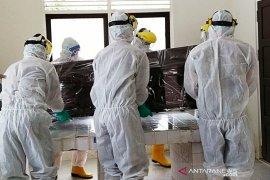 Virus corona jenis baru pembunuh langsung 89 persen pasien COVID-19 di Italia