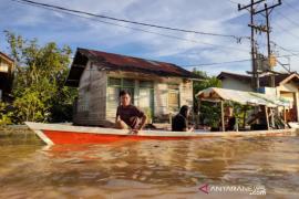 Sungai Kapuas kembali meluap waspada banjir besar di Kapuas Hulu