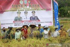 Pemkab Belitung susun strategi wujudkan kemandirian pangan