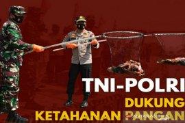Panglima TNI-Kapolri bakal sambangi Kampung Tangguh COVID-19 di Kalsel