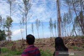 Terbitkan izin usaha di TWA Pantai Panjang, Menteri Siti Nurbaya diprotes