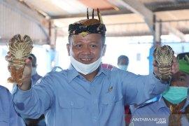 Menteri Edhy: Lumbung ikan nasional di Maluku