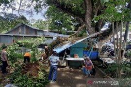 Warung rusak berat akibat pohon tumbang di Sabang