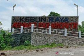 Pemerintah Kabupaten  Minahasa Tenggara tata batas kebun raya Megawati Soekarnoputri