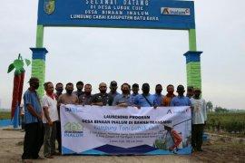 Inalum launching desa binaan agriwisata di sekitar jalur transmisi