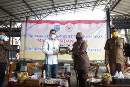 Bupati Irna minta bantuan DPR perjuangkan tenaga honrer