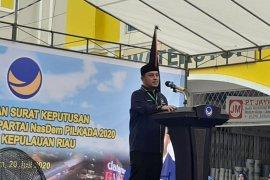 NasDem: Penggugat jabatan ex-officio BP Batam tak hargai Jokowi
