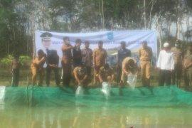 Produksi ikan air tawar di Bangka Tengah capai 1.400 ton