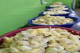 Ekspor durian beku Sumut ke Tiongkok dan Malaysia meningkat