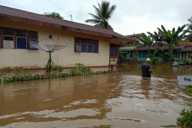 301 rumah warga pesisir sungai di Kapuas Hulu terendam banjir