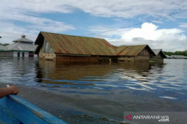 Banjir di Konawe meluas ke 62 desa