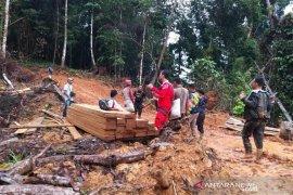 Polisi tangkap pemuda diduga terlibat pembalakan liar di Aceh Jaya