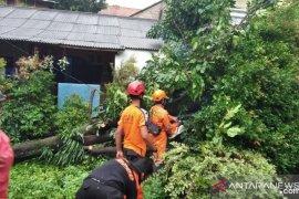 BPBD Kota Bogor tangani bencana akibat angin kencang selama bulan Juli 2020