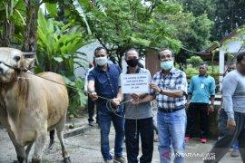 Pemkab Bangka terima bantuan satu ekor sapi kurban