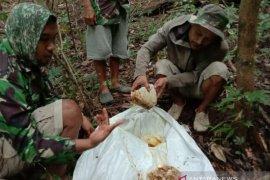 Petani madu hutan banjir pesanan di masa pandemi