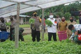 Dua desa di Ambon dicanangkan sebagai Kampung Tangguh Nusantara