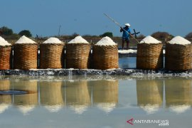 Menteri Kelautan dan Perikanan yakin petambak nasional menghasilkan garam berkualitas