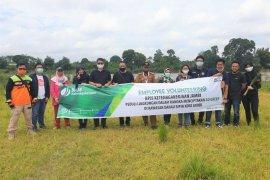 Peduli Lingkungan, BPJAMSOSTEK sebar bibit pohon Bungur di kawasan Danau Sipin