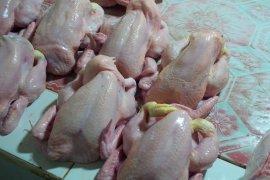 Harga daging ayam jelang Idul Adha 1441 Hijriah di Ternate melonjak