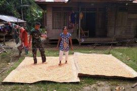 Satgas TMMD ke 108 bantu Nenek Rajimah jemur Jagung