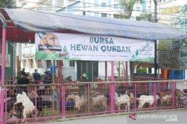 Pemkot Bekasi beri label halal ribuan hewan kurban di lapak pedagang
