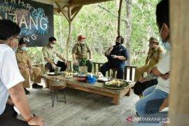 Menteri LHK apresiasi Bangka Belitung tanami mangrove di bekas tambang