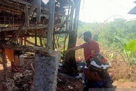 Berburu tikus, security tewas tersengat listrik di peternakan ayam di Serang