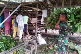 Prada Ibrahim bantu warga mencari makanan untuk kambing