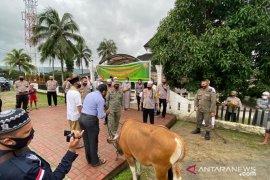 Pengurus masjid At-Taqwa terima sumbangan hewan kurban dari Kapolda